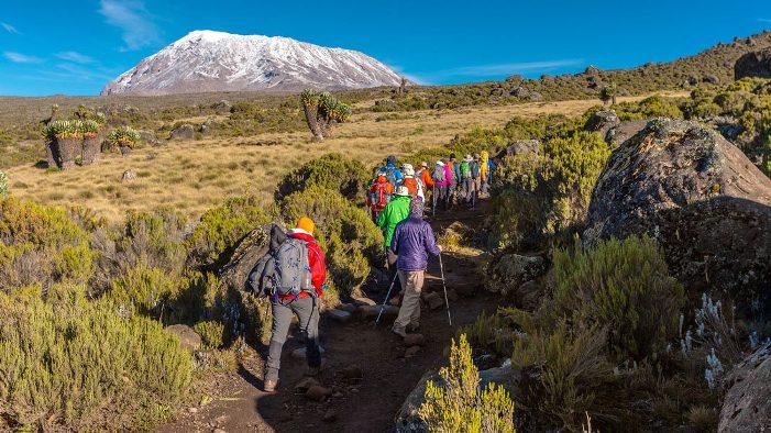 Mt. Kilimanjaro Climb Machame Route