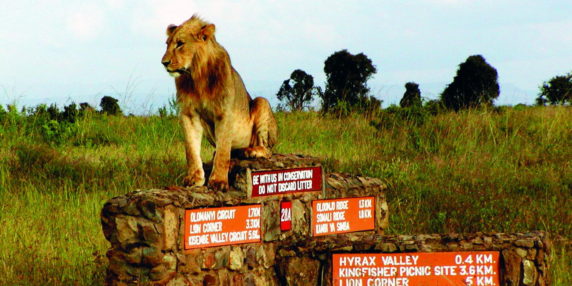 nairobinationalpark