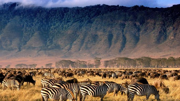 The Ngorongoro